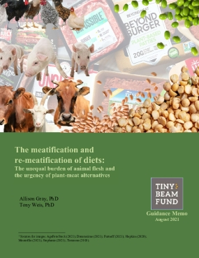 The meatification and re-meatification of diets: The unequal burdens of animal flesh and the urgency of plant-meat alternatives